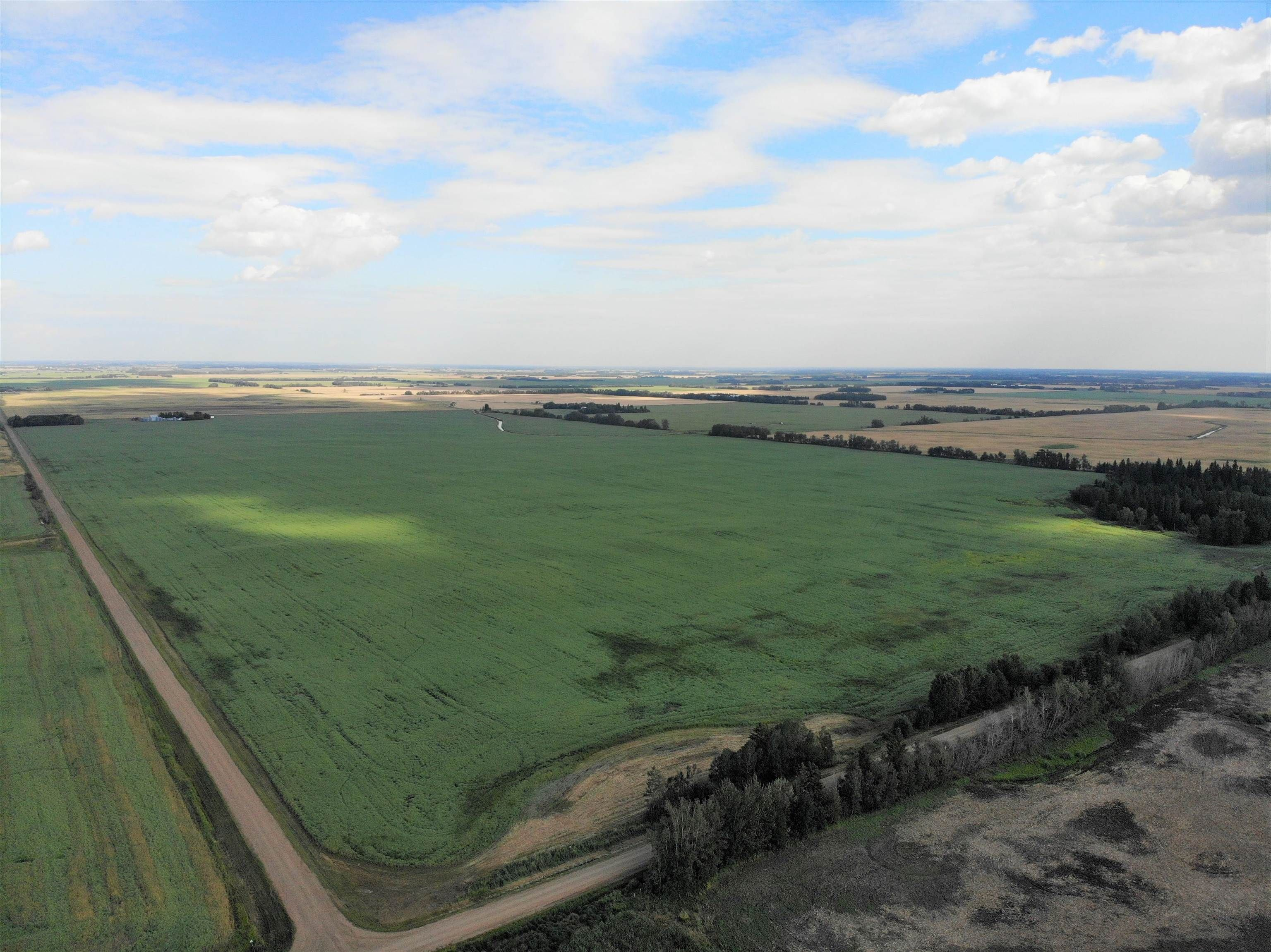 Main Photo: TWP 593 and RR 212: Rural Thorhild County Rural Land/Vacant Lot for sale : MLS®# E4259030