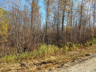 Photo 7: 137 Marean Street in Marean Lake: Lot/Land for sale : MLS®# SK788463