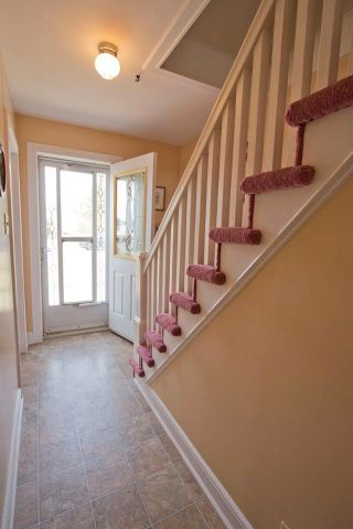 Photo 6: 16 Copp Avenue: Sackville House for sale : MLS®# M104111