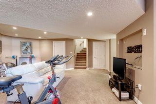 Photo 37: 238 Mt Douglas Court SE in Calgary: McKenzie Lake Detached for sale : MLS®# A1093019