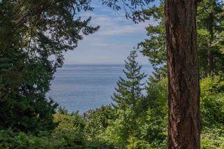 "Photo 13: 12585 15 Avenue in Surrey: Crescent Bch Ocean Pk. House for sale in ""OCEAN PARK"" (South Surrey White Rock)  : MLS®# R2212824"