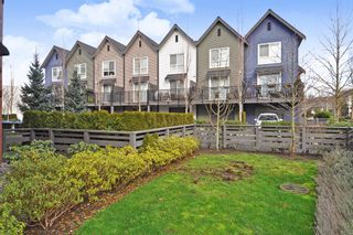 """Photo 19: 32 2325 RANGER Lane in Port Coquitlam: Riverwood Townhouse for sale in """"FREEMONT BLUE"""" : MLS®# R2431249"""