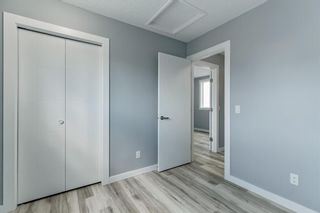 Photo 20: 23 Erin Meadows Court SE in Calgary: Erin Woods Detached for sale : MLS®# A1146245