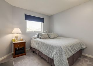 Photo 22: 115 Douglasview Bay SE in Calgary: Douglasdale/Glen Detached for sale : MLS®# A1108035