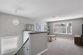 Photo 19: 16 CODETTE Way: Sherwood Park House for sale : MLS®# E4237097