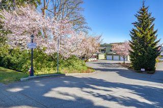 Photo 1: 101 2970 Cliffe Ave in : CV Courtenay City Condo for sale (Comox Valley)  : MLS®# 872763