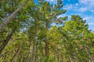 Photo 20: 399 Ocean Spring Terr in : Sk Becher Bay Land for sale (Sooke)  : MLS®# 877011