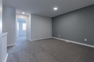 Photo 22: 1042 BERG Place: Leduc House for sale : MLS®# E4266098