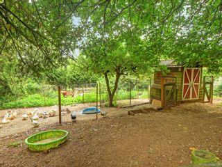 Photo 25: 5417 West Saanich Rd in Saanich: SW West Saanich House for sale (Saanich West)  : MLS®# 844358
