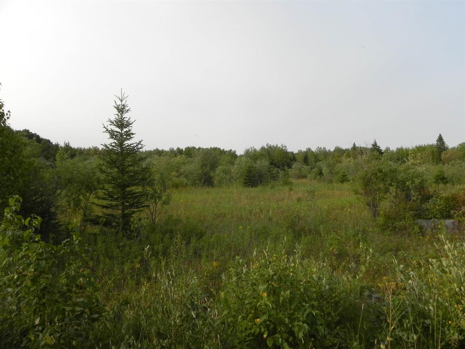 Main Photo: 22084 PT 2 PARCEL, WHITMORE RD in FORT FRANCES: Vacant Land for sale : MLS®# TB212402
