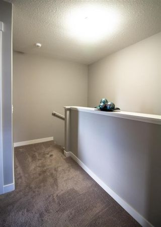 Photo 24: 308 EVANSTON Manor NW in Calgary: Evanston Row/Townhouse for sale : MLS®# A1009333