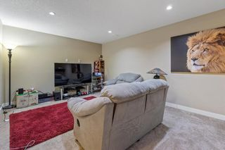 Photo 29: 101 COPPERSTONE Close SE in Calgary: Copperfield Detached for sale : MLS®# A1076956