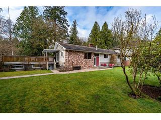 Photo 1: 4265 198 Street in Langley: Brookswood Langley House for sale : MLS®# R2448156
