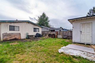 Photo 15: 20147 52 Avenue: House for sale in Langley: MLS®# R2540640
