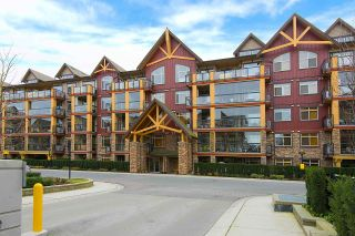 """Photo 20: 124 8288 207A Street in Langley: Willoughby Heights Condo for sale in """"Yorkson Creek Walnut Ridge II"""" : MLS®# R2135394"""