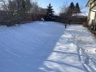 Photo 23: 10607 24 Avenue in Edmonton: Zone 16 House for sale : MLS®# E4227205