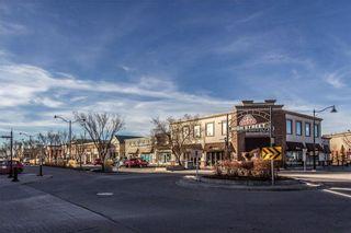 Photo 32: 262 NEW BRIGHTON Mews SE in Calgary: New Brighton House for sale : MLS®# C4149033