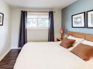 Photo 19: 11172 37 Avenue in Edmonton: Zone 16 House for sale : MLS®# E4241149