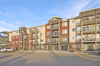Photo 1: 108 7711 71 Street in Edmonton: Zone 17 Condo for sale : MLS®# E4240442