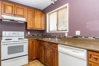 Photo 17: 580 STUART Street in Hope: Hope Center House for sale : MLS®# R2544119