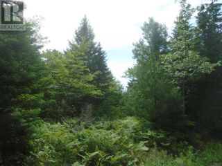 Photo 1: Lot MF-2 Lakefront Drive in Chelsea: Vacant Land for sale : MLS®# 202121785