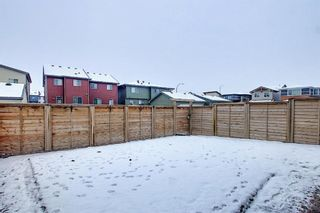 Photo 27: 16 Walden Mount SE in Calgary: Walden Residential for sale : MLS®# A1053734