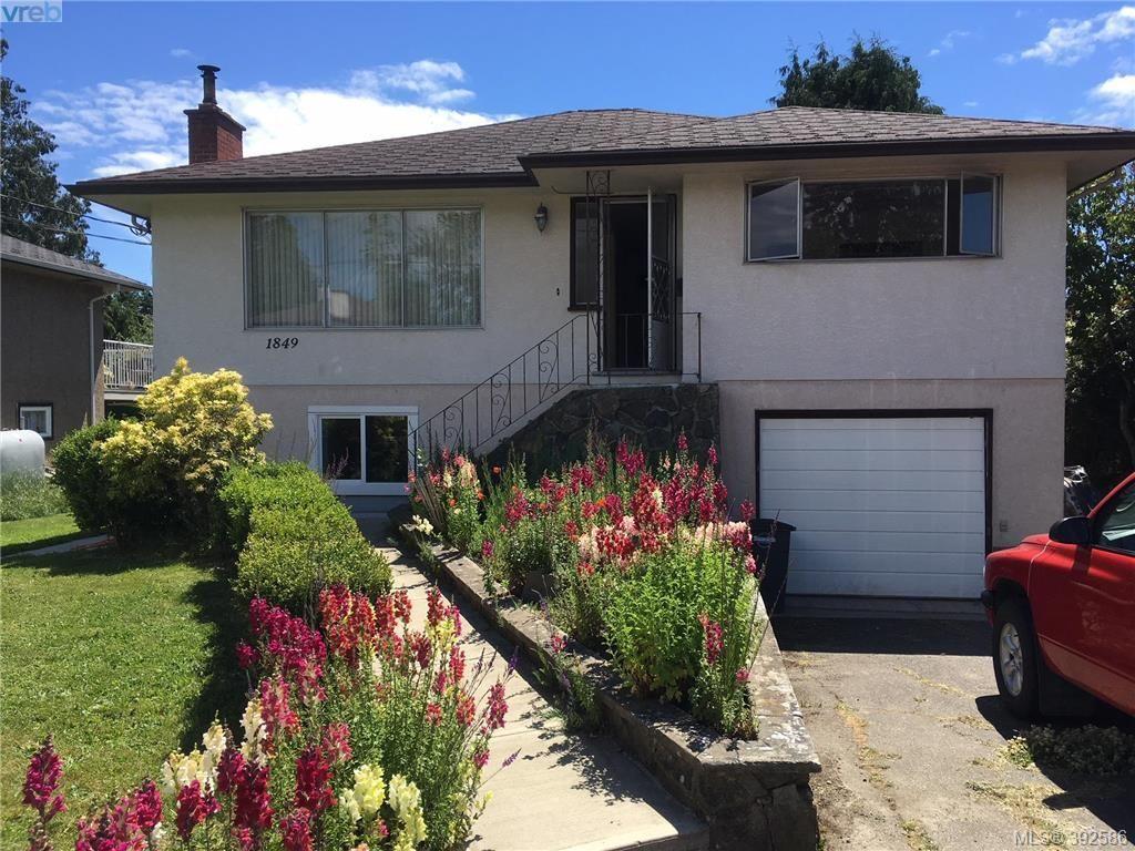 Main Photo: 1849 Carnarvon St in VICTORIA: SE Camosun House for sale (Saanich East)  : MLS®# 789064