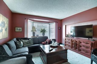 Photo 16: 4635 22 Avenue NW in Calgary: Montgomery Detached for sale : MLS®# A1068719