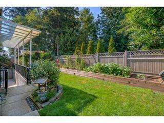 Photo 29: 12677 61B Avenue in Surrey: Panorama Ridge House for sale : MLS®# R2599969
