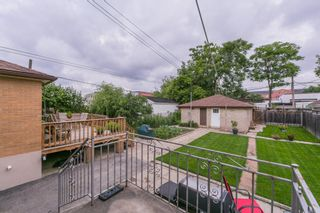 Photo 43: 262 Ryding Ave in Toronto: Junction Area Freehold for sale (Toronto W02)  : MLS®# W4544142