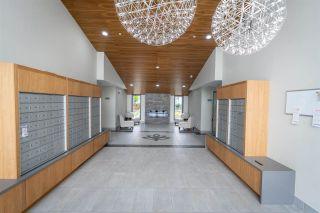 """Photo 24: 403 11501 84 Avenue in Delta: Scottsdale Condo for sale in """"Delta Gardens"""" (N. Delta)  : MLS®# R2585661"""