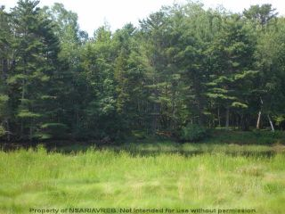 Photo 19: Lot 11 RAFUSE POINT Road in Pleasantville: 405-Lunenburg County Vacant Land for sale (South Shore)  : MLS®# 202122075