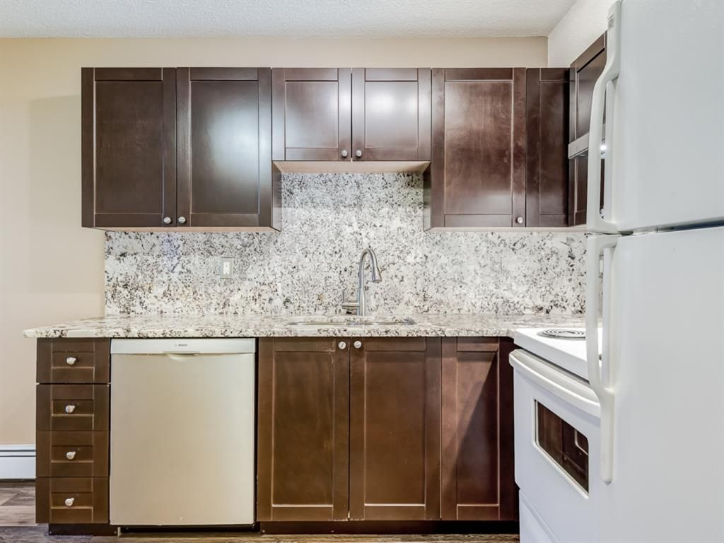 Photo 4: Photos: 112 1717 60 Street SE in Calgary: Red Carpet Apartment for sale : MLS®# A1050872