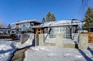 Photo 1: 71 Hillgrove Drive SW in Calgary: Haysboro Detached for sale : MLS®# A1060147