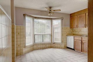 Photo 6: 39 TEMPLETON Bay NE in Calgary: Temple Detached for sale : MLS®# C4261521