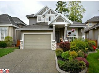 Photo 1: 11083 161A Street in Surrey: Fraser Heights House for sale (North Surrey)  : MLS®# F1213145