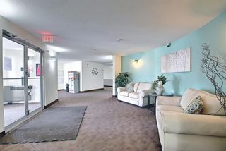 Photo 34: 1308 1308 Millrise Point SW in Calgary: Millrise Apartment for sale : MLS®# A1089806