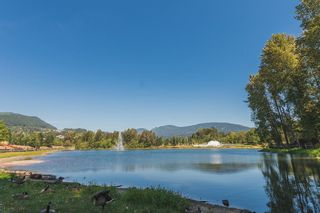 """Photo 47: 433 2980 PRINCESS Crescent in Coquitlam: Canyon Springs Condo for sale in """"Montclaire"""" : MLS®# R2101086"""