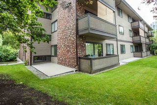 "Photo 15: 104 535 BLUE MOUNTAIN Street in Coquitlam: Central Coquitlam Condo for sale in ""REGAL COURT"" : MLS®# R2081346"