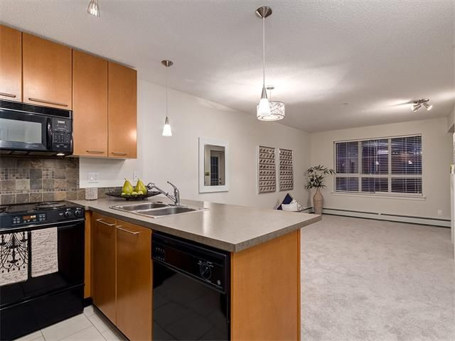 Photo 5: Photos: 329 35 RICHARD Court SW in Calgary: Lincoln Park Condo for sale : MLS®# C4030447