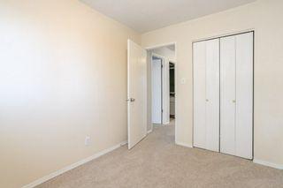 Photo 17: 3452 39 Street in Edmonton: Zone 29 House for sale : MLS®# E4231480