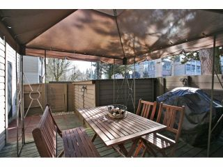 """Photo 18: 5 14171 104 Avenue in Surrey: Whalley Townhouse for sale in """"HAWTHORNE PARK"""" (North Surrey)  : MLS®# F1404162"""