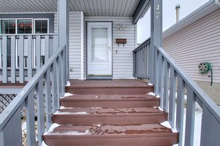 Photo 4: 47 Appleburn Close SE in Calgary: Applewood Park Detached for sale : MLS®# A1049300