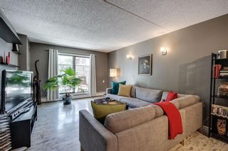 Photo 5: 307 735 12 Avenue SW in Calgary: Beltline Apartment for sale : MLS®# A1141727