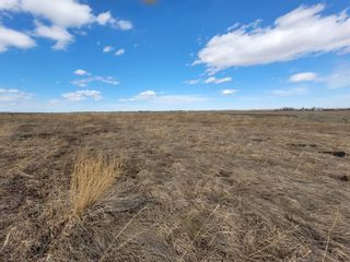 Photo 6: 10 1431 Twp Rd 304: Rural Mountain View County Detached for sale : MLS®# A1092926