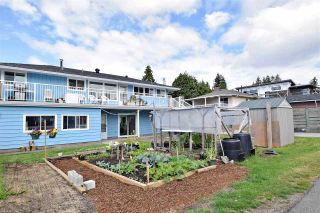 Photo 20: 419 GLENHOLME Street in Coquitlam: Central Coquitlam House for sale : MLS®# R2092246