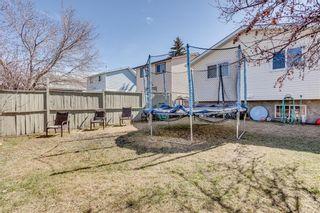 Photo 47: 93 ABERDARE Road NE in Calgary: Abbeydale Detached for sale : MLS®# C4240941