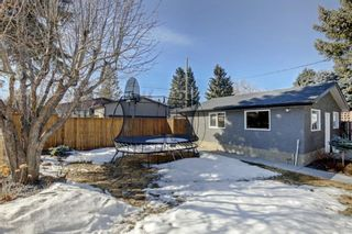 Photo 36: 6427 Larkspur Way SW in Calgary: North Glenmore Park Detached for sale : MLS®# A1079001