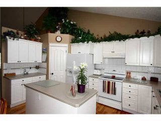 Photo 6: 37 CANOE Circle SW: Airdrie Residential Detached Single Family for sale : MLS®# C3561541