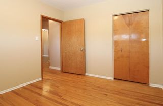 Photo 14: 2427 47 Street SE in Calgary: Forest Lawn Detached for sale : MLS®# A1150911